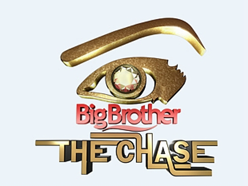 Big Brother Africa 8: The Chase (15 DVD Set) 2013 TV Series