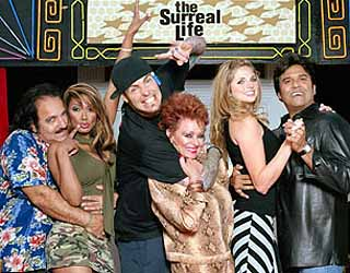 Surreal Life, The: (13 DVD Set) 2003 TV Series